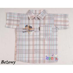 Bawełniana koszula z krótkim rękawem dla chłopców rozmiar 86...