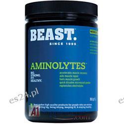 Beast Sports Nutrition Aminolytes, 30 Servings