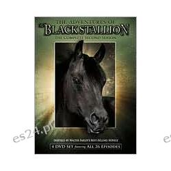 Adventures of the Black Stallion: the Complete Second Season
