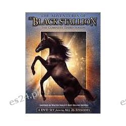 Adventures of the Black Stallion: Third Season