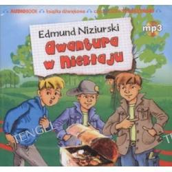 Awantura w Niekłaju - książka audio na CD (format MP3)