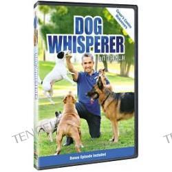 Dog Whisperer With Cesar Millan: Canine Makeovers a.k.a. Dog Whisperer with Cesar Millan: Canine Makeovers