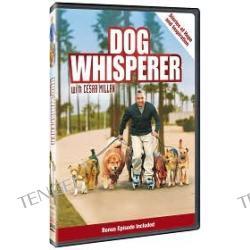 Dog Whisperer: Stories Of Hope & Inspiration a.k.a. Dog Whisperer: Stories of Hope & Inspiration