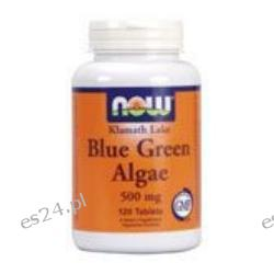 NOW Foods - Blue Green Algae 500 mg. - 120 Tablets