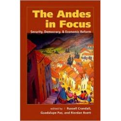 Andes in Focus
