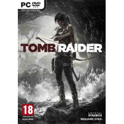 Tomb Raider 2013(PC)