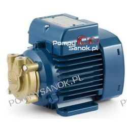 Pompa wirowa PEDROLLO PVm 55 230V 0,16 kW