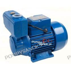 Pompa powierzchniowa WZI 250 Pompy i hydrofory
