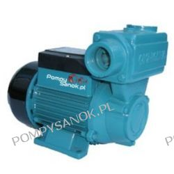 Pompa samozasysająca WZ 250 CW - 230V do wody ciepłej Pompy i hydrofory
