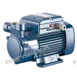 Pompa peryferalna PQ 81 PRO 3x230V/400V PEDROLLO Dom i Ogród