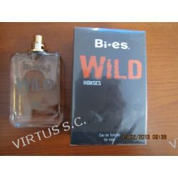 BI-ES Wild horses