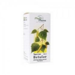 Succus Betulae 100ml Sok ze świeżych liści brzozy...
