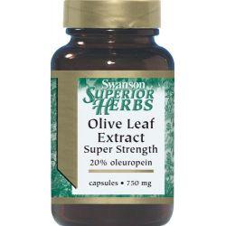 Liść oliwny STRONG 20% 60 kapsułek...