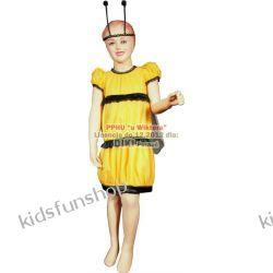 Kostium karnawałowy, Pszczółka