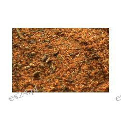 Czubryca czerwona 250 g Mieszanki przyprawowe
