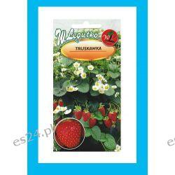 Nasiona truskawek