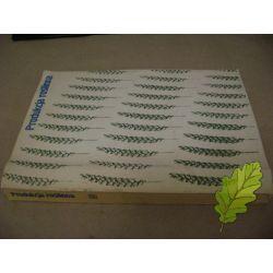 Produkcja Roślin /1985 wyd Rolnicze Leśne /RARYTAS