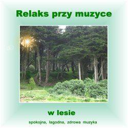 Relaks przy Muzyce w Lesie - Marcin Siwiec