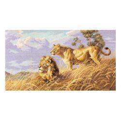 Afrykańskie Lwy