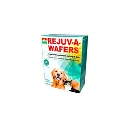 Sun Chlorella, Rejuv-A-Wafers, Superfood Supplement for Dogs & Cats, 60 Wafers - iHerb.com