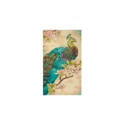 Zwierzęta - Indyjski Paw