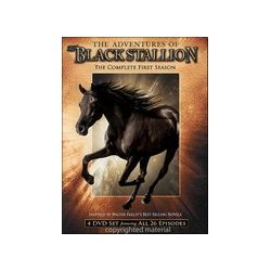 Adventures Of The Black Stallion, The: The Complete First Season (DVD 1990)
