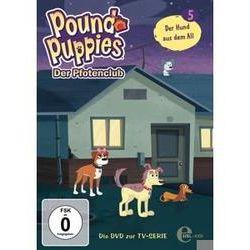 Film: (5)DVD z.TV-Serie-Der Hund Aus Dem All  von Pound Puppies-Der Pfotenclub mit Pound Puppies