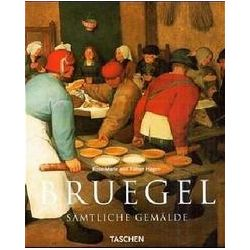Bücher: Pieter Bruegel d. Ä. um 1525 - 1569  von Rainer Hagen