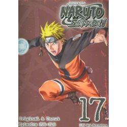 Naruto Shippuden: Volume 17 (DVD)