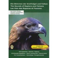 Hörbücher: Die Stimmen der Greifvögel und Falken. The Sounds of Raptors and Falcons. Les Voix des Rapaces et Faucons  von Andreas Schulze, Christian R. Fackelmann, Karl-Heinz Dingler