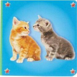 Kosteczka - 2 Kotki