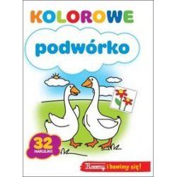 Kolorowe podwórko - Wydawnictwo Wilga