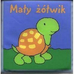 Mały żółwik