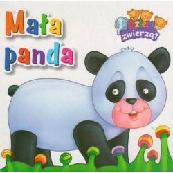 Mała panda. Dzieci zwierząt
