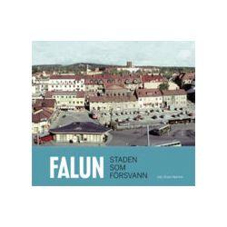Falun Staden som försvann - Bok (9789197861946)