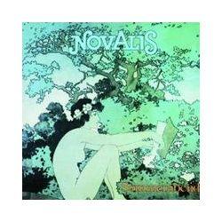 Musik: Sommerabend  von Novalis