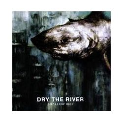 Musik: Shallow Bed  von Dry The River