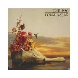 Musik: Wolf's Law  von The Joy Formidable