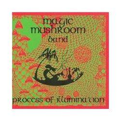 Musik: Process Of Illumination  von Magic Frantic Mushroom