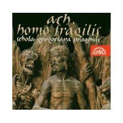 Musik: Ach,Homo Fragilis  von Schola Gregoriana Pragensis