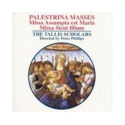 Musik: Missa Assumpta est Maria/Missa Sicut lilium  von The Tallis Scholars, Peter Phillips