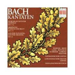 Musik: Kantaten BWV 173a/173/26  von Schreier, Werner, Rotzsch, GOL