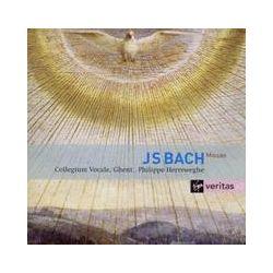 Musik: Messen BWV 233-235  von Herreweghe, Collegium Vocale GH
