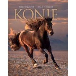 Konie -
