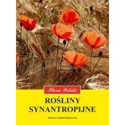 Rośliny synantropijne - Barbara Sudnik-Wójcikowska