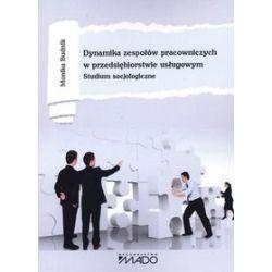 Dynamika zespołów pracowniczych w przedsiębiorstwie usługowym. Studium socjologiczne - Monika Budnik
