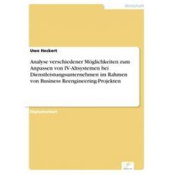 eBooks: Analyse verschiedener Möglichkeiten zum Anpassen von IV-Altsystemen bei Dienstleistungsunternehmen im Rahmen von Business Reengineering-Projekten  von Uwe Heckert
