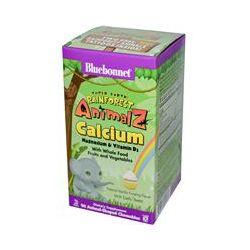 Bluebonnet Nutrition, Super Earth, Rainforest Animalz, Calcium, Natural Vanilla Frosting Flavor, 90 Chewables