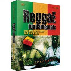 Big Fish Audio  DVD: Reggae Fundamentals RGFU1-PW B&H Photo Video