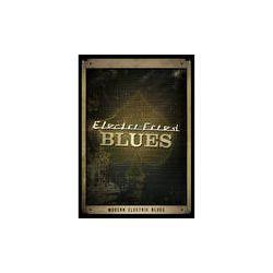 Big Fish Audio Electri-Fried Blues DVD XDGP02-ORWXZ B&H Photo
